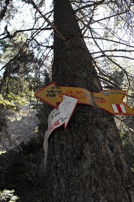 "Piatra Craiului - indicator traseu catre Varful ""La Om"" prin Zaplaz - La Lanturi"