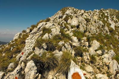 Piatra Craiului - Creasta