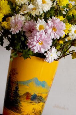 tufanici. flori de toamna