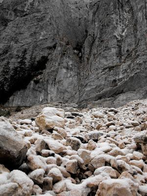 Piatra Craiului. Grohotis