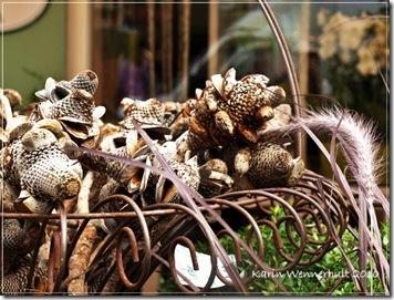 Underliga växter