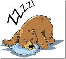 bjornen-sover