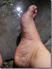 foot wash 9735