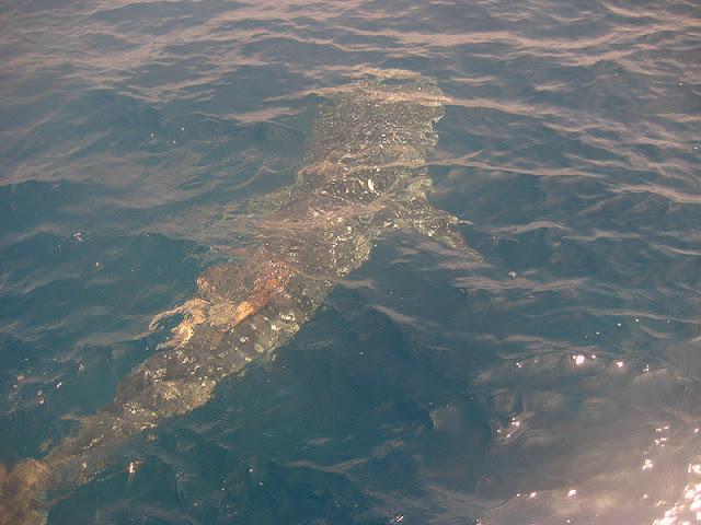 Когда и где в Тайланде выше вероятность увидеть китовых акул