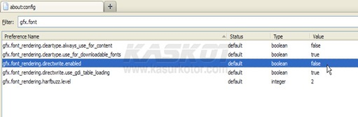 Cara Mengaktifkan/Enable D2D (Direct2D) di Firefox 4