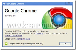 Google Chrome Update - 10.0.648.205 Stable Version