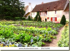 stock-photo-kitchen-garden-vegetable-garden-near-old-france-cottage-25171090