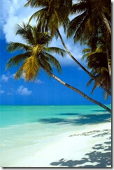 2400-4757~Tropical-Beach-Posters