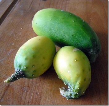 Overripe Cucumbers