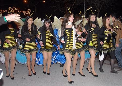 Carnaval 2008-310108-0097