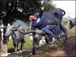 paul-on-bull
