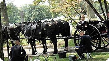 graves-horses-black