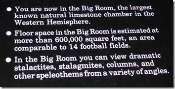 20-Big-Room-info