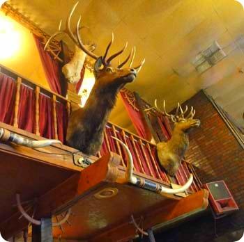 7-deer-heads