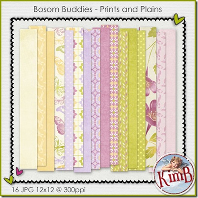 kb-Bbuddies_printsandplains