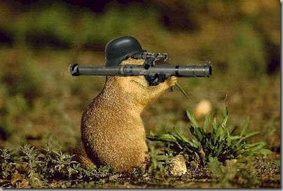 Squirrel with mortar