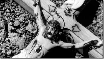 Ants on a crucifix