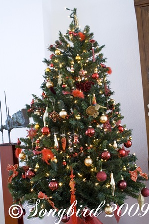 Christmas tree 2009