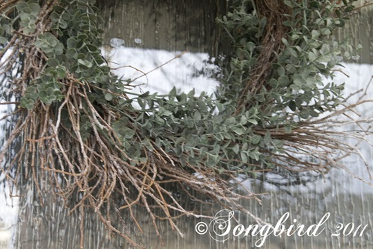 Winter Wreath3 