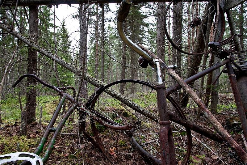cykelkoja (3)