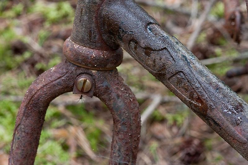 cykelkoja (5)