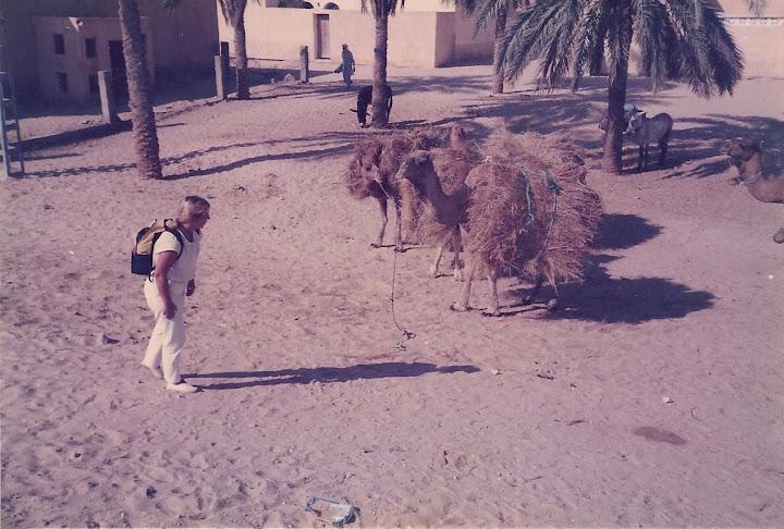 argelia%204%20020.jpg