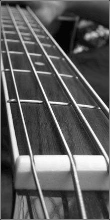 melnar, tilromen, bass