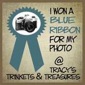 blue ribbon_edited-2