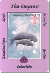 Australian Animal Tarot (3)