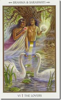 Animals Divine Tarot (6)