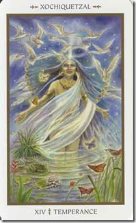 Animals Divine Tarot (14)