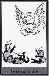 Ferret Tarot (14)