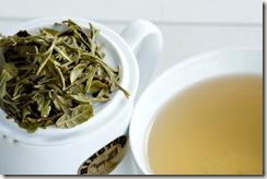 White Tea 05