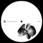 Lucy & Ercolino - Gmork (Luke Slater remix)