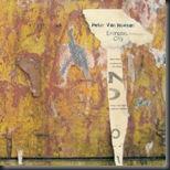 Peter Van Hoesen - Entropic City