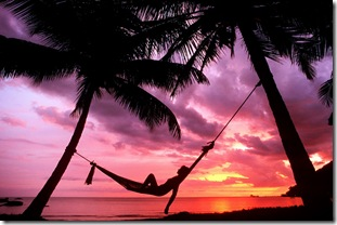 72288-Relaxing%20in%20Palm%20Paradise