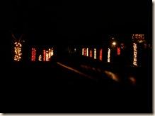 Dazzling Driveway