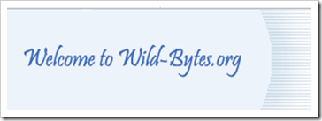 wild bytes
