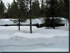 13.Snow.Colter.Bay.Cabins.04.28.11