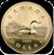 iCoin Canada Lite