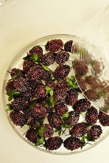 Blackberries-250x375