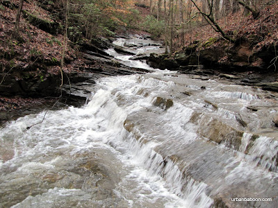 Alcovy Mill Waterfall