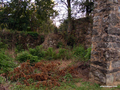 Lowry's Mill Ruins