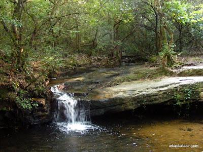 Csonka Falls