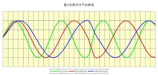 http://lh5.ggpht.com/_GRvA3rycUj4/SxJw2G5-TdI/AAAAAAAAASY/WHoOmSzpTR8/Biorhythms.jpg