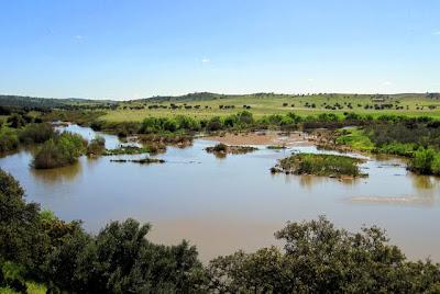 junta de ríos Guadamatilla y Zújar