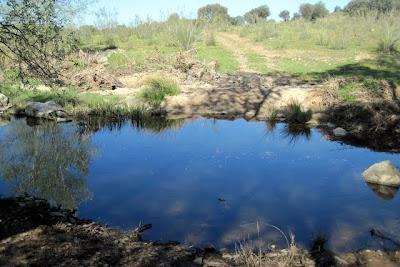 rio Guadarramilla