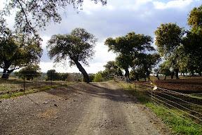 Senda Arroyo Cañadabélmez