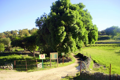 parque natural de cardeña montoro