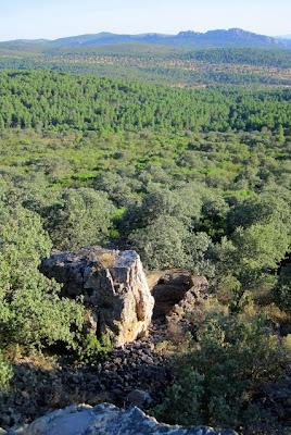 Castillo del Viñón